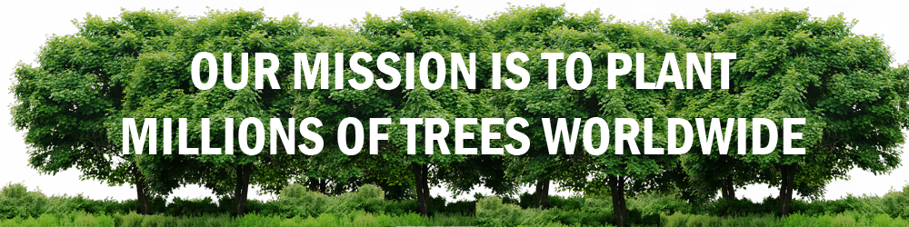Legacy Tree Mission Worldwide
